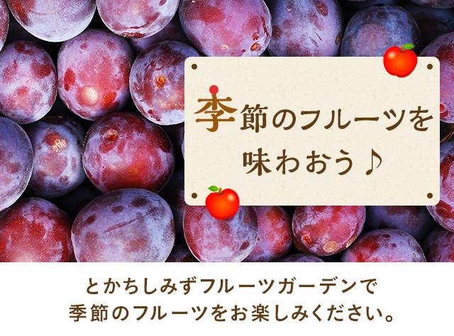 季節のフルーツを味わおう